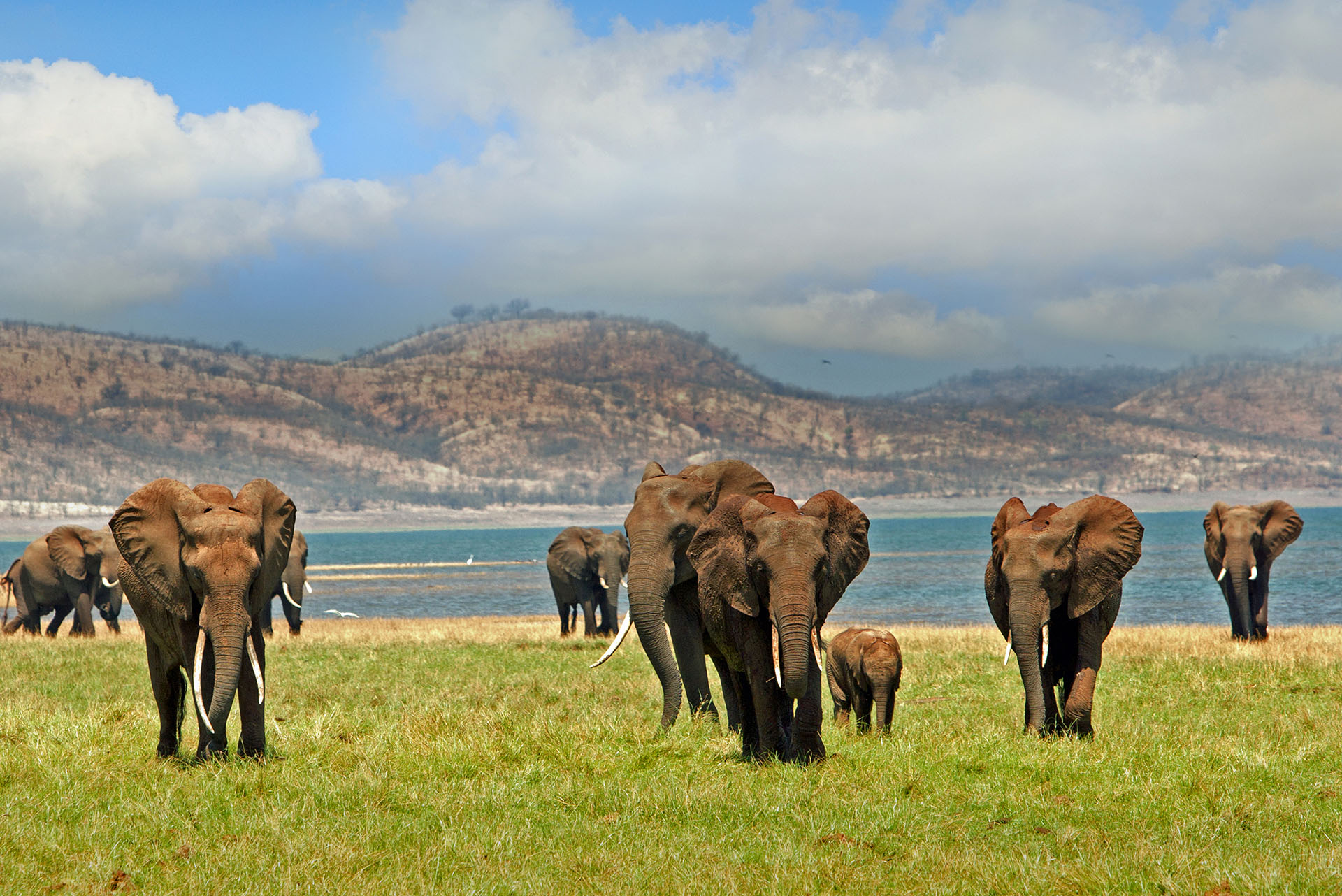 Abenteuerreisen & Erlebnisreisen: Lake Kariba Simbabwe