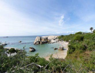 Boulders Beach auf Südafrika Safari Reise
