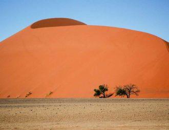 Zwischenstopp Big Daddy Dune auf Namibia Safari Rundreisen