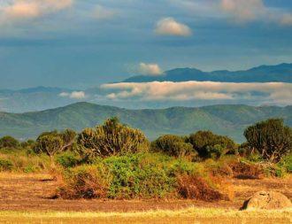Uganda Safari Reise im Queen Elizabeth Nationalpark