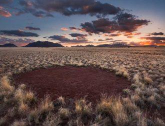 Fairy Circles auf einer Namibia Safari Reise