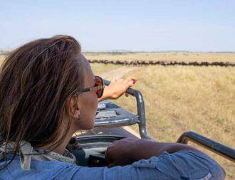 Frau schaut bei einer Kenia Safari Reise aus dem Fahrzeug auf eine Gnu Herde in der Masai Mara
