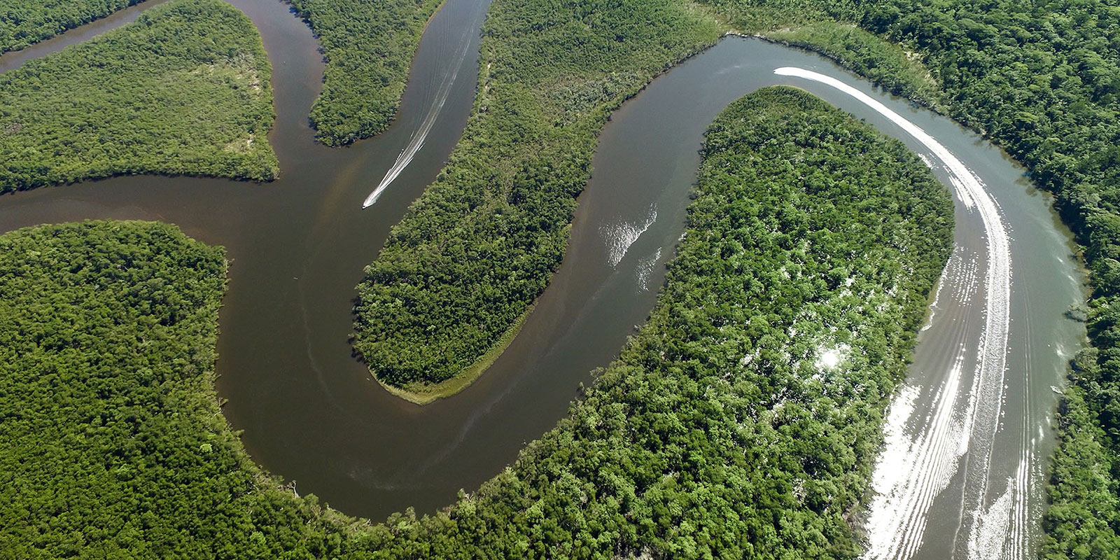 Amazonas Brasilien, Flitterwochen Abenteuer, Brasilien Rundreise 2 Wochen, Rundreise ARGENTINIEN BRASILIEN, individuelle Rundreise ARGENTINIEN BRASILIEN, Mietwagenrundreise ARGENTINIEN BRASILIEN, Reise ARGENTINIEN BRASILIEN, erlebe ARGENTINIEN BRASILIEN, Selbstfahrer ARGENTINIEN BRASILIEN, Kleingruppenreise ARGENTINIEN BRASILIEN, ARGENTINIEN BRASILIEN auf eigene Faust, Gruppenreise ARGENTINIEN BRASILIEN, Urlaub in ARGENTINIEN BRASILIEN, Ferien in ARGENTINIEN BRASILIEN, Familienreise ARGENTINIEN BRASILIEN, Flitterwochen ARGENTINIEN BRASILIEN, Hochzeitsreise ARGENTINIEN BRASILIEN