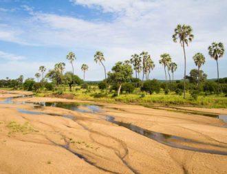Tansania Safari Reisen mit einem Traumstrand im Ruaha Nationalpark verbinden