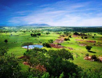 Wunderschöne Landschaft der Serengeti während einer Tansania Safari Reise